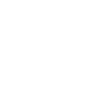 Authentic Media